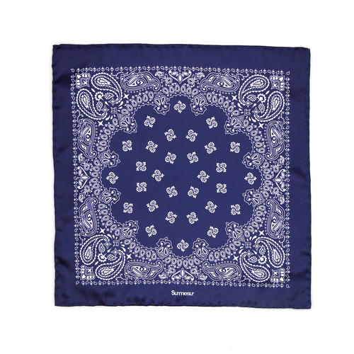 Pocket square Silk Pocket Square - Siegel