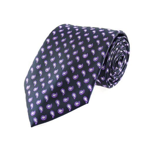 Cravate régulière Cravate - Le prince
